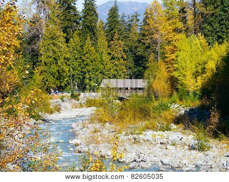 Fitzsimmons Creek Whistler