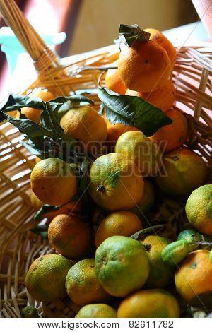 Tangerines In A Wattled Basket