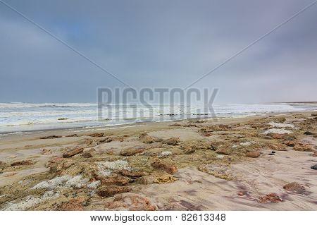 Dark Sky Beach Skeleton Coast Namibia