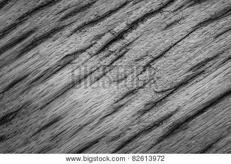 Gray Texture Very Old Oak Wood