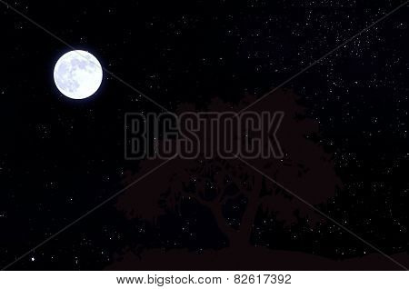 Portrait of Moon in the sky with stars.
