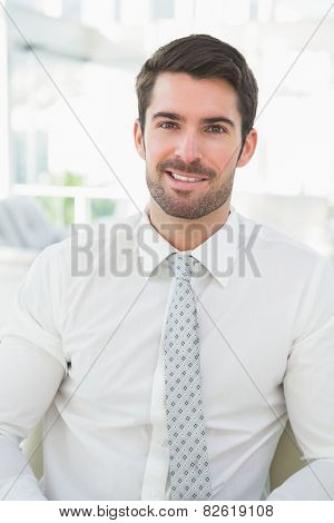 Portrait of a smiling businessman well dressed in his office