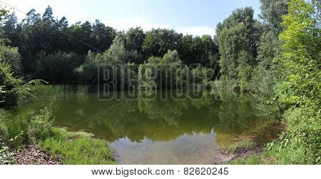 Idyllic Small Lake In The Forest