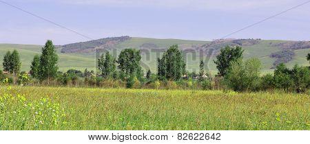 Scenic Landscape In Siberia Russia