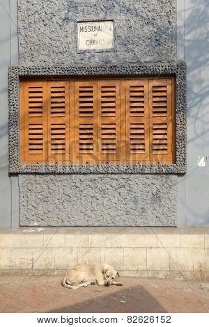 KOLKATA, INDIA - NOV 25: Windows of the Mother House, where Mother Teresa used to live on Dec 25, 2012 in Kolkata, West Bengal, India.