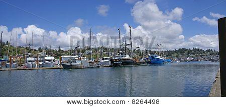 Panorama Of Fishing Boats At Anchor