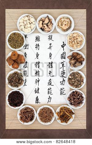 Herb selection in porcelain bowls with calligraphy script. Translation describes chinese herbal medicine as increasing the bodys ability to maintain body and spirit health and balance energy.