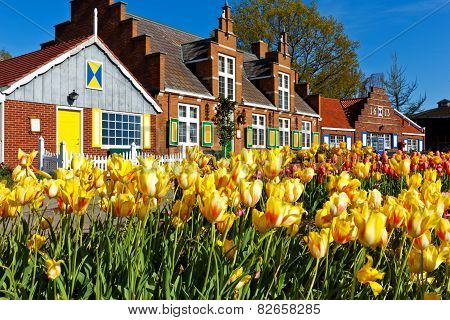 Tulips Line Paths At Windmill Island Village In Holland Michigan.
