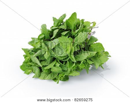 bunch of fresh spearmint isolated on white