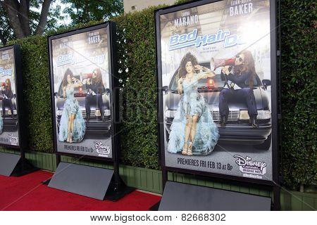 LOS ANGELES - FEB 10: Poster, Atmosphere at the screening of the Disney Channel Original Movie 'Bad Hair Day' at the Frank G Wells Theater on February 10, 2015 in Burbank, CA