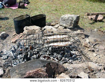 Fried fish on a fire at Lake Baikal