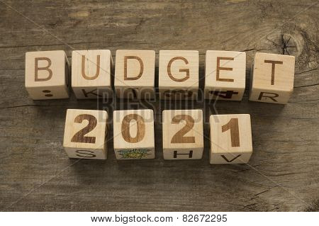 Budget for 2021 wooden, blocks on a wooden background