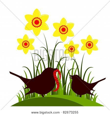 Daffodils And Birds