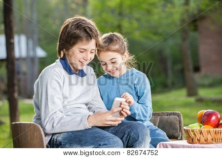 Smiling siblings using cellphone while sitting on chairs at campsite
