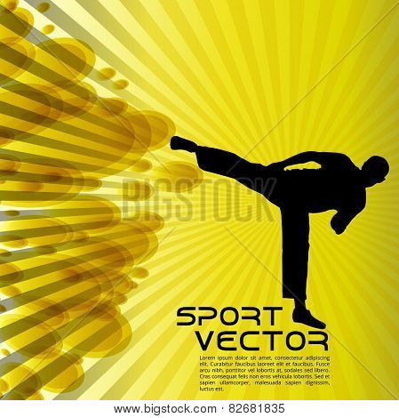 Illustration of karate. Vector