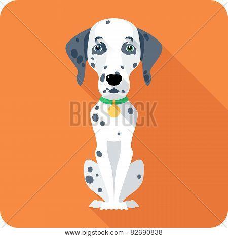 dog Dalmatian icon flat design
