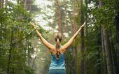 stock photo of morning  - healthy lifestyle fitness sporty woman running early in the morning in forest area fitness healthy lifestyle concept - JPG