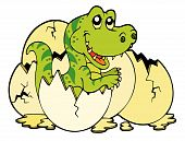 picture of dinosaur-eggs  - Young tyrannosaurus rex hatching from egg  - JPG