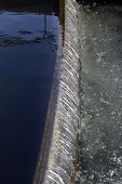stock photo of brook trout  - Fish farm in the cool clear water channels - JPG