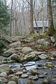 image of gatlinburg  - Historical log cabin in the woods - JPG