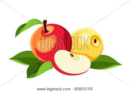 Red and yellow apples isolated on white. Vector illustration.