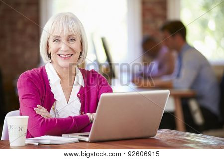 Senior Woman Working At Laptop In Contemporary Office