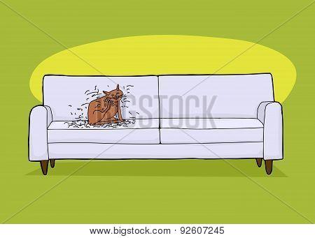 Messy Cat On Sofa