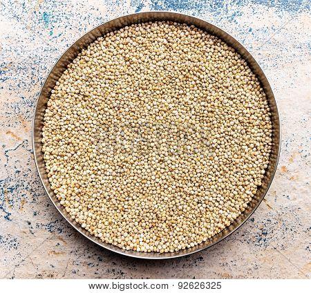 closeup of Sorghum seeds or white millet or whole jowar kernels kept in vessel on blurred background