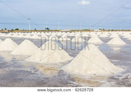 Farmers Are Harvesting Salt In The Salt Fields.