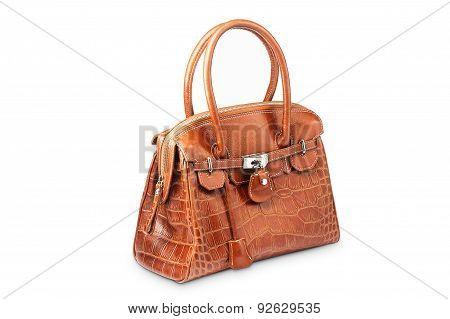 Nice brown crocodile leather