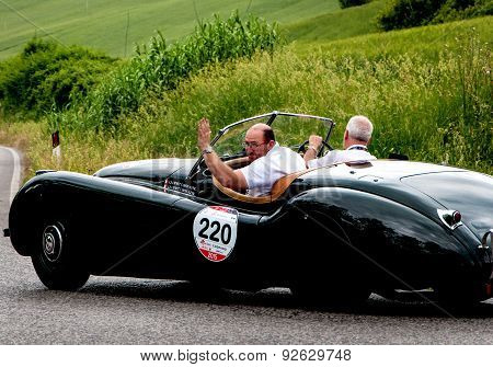 old car JAGUAR XK 120 OTS Roadster 1951   mille miglia 2015