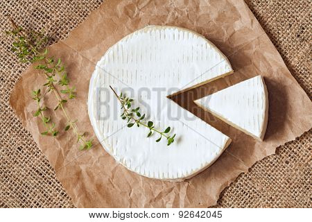 Sliced round camembert cheese traditional milk creamy dairy product with thyme on vintage parchment