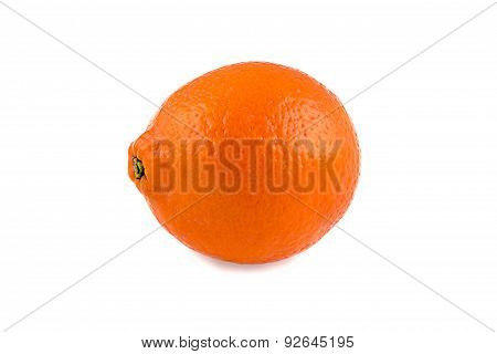 Image of orange minneola