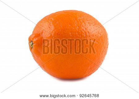 Photo of orange ripen minneola