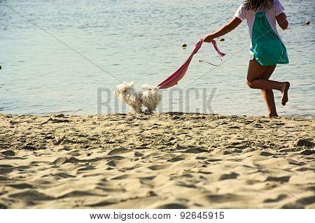 Happiness,pet,dog,girl,beach,sea
