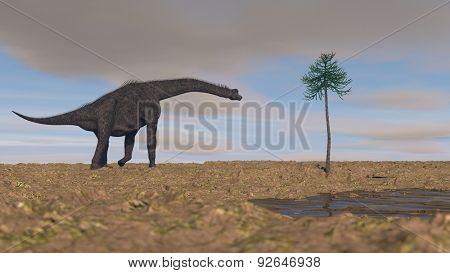 walking brachiosauruses