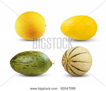 Set Collection of Melon isolated on white background