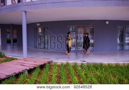Rice Plantation, China Pavilion At  Expo 2015, Milan
