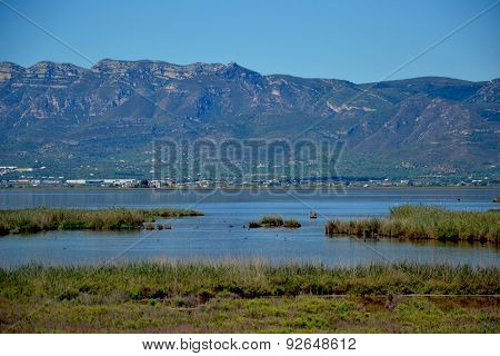 View At Water, Waterplants And Mountains.