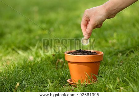 Female hand planting coin into flowerpot over green grass background