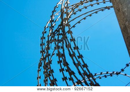 Coil Of Barbed Wire On A Concrete Fence