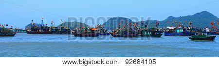 Cat Ba Fishing Harbor