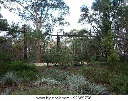 A hanging walking bridge