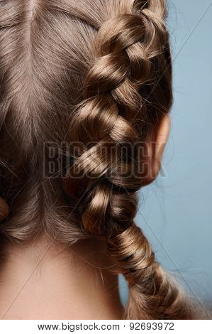 Beauty Model With Pigtails From Back