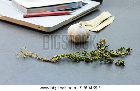 The Science And Researching Herb For Make Medicine.