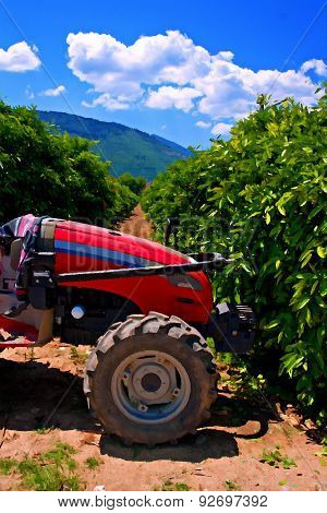 Redtractor In A Peach Orchard Digitally Painted