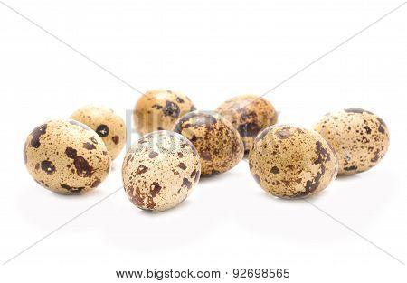 Quail eggs isolated on white background