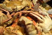 foto of crab  - Thai style Crab Curry - JPG