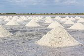 picture of salt mine  - Heap of sea salt in salt farm ready for harvest south of Thailand - JPG