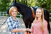 picture of horse girl  - Amicable relationships - JPG